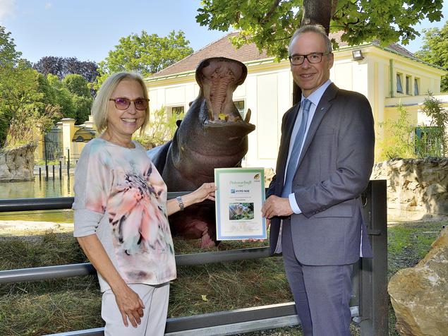 HYPO NOE übernimmt Hippo-Patenschaft