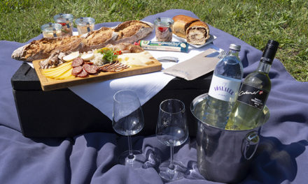 Weingut Cobenzl bittet zu Picknick