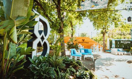 Belvedere Summer Bay open – Air Cocktail – Bar